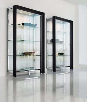 contemporary-glass-diplay-cabinet